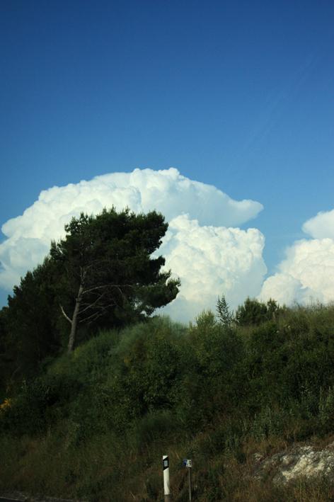 following a cloud 10