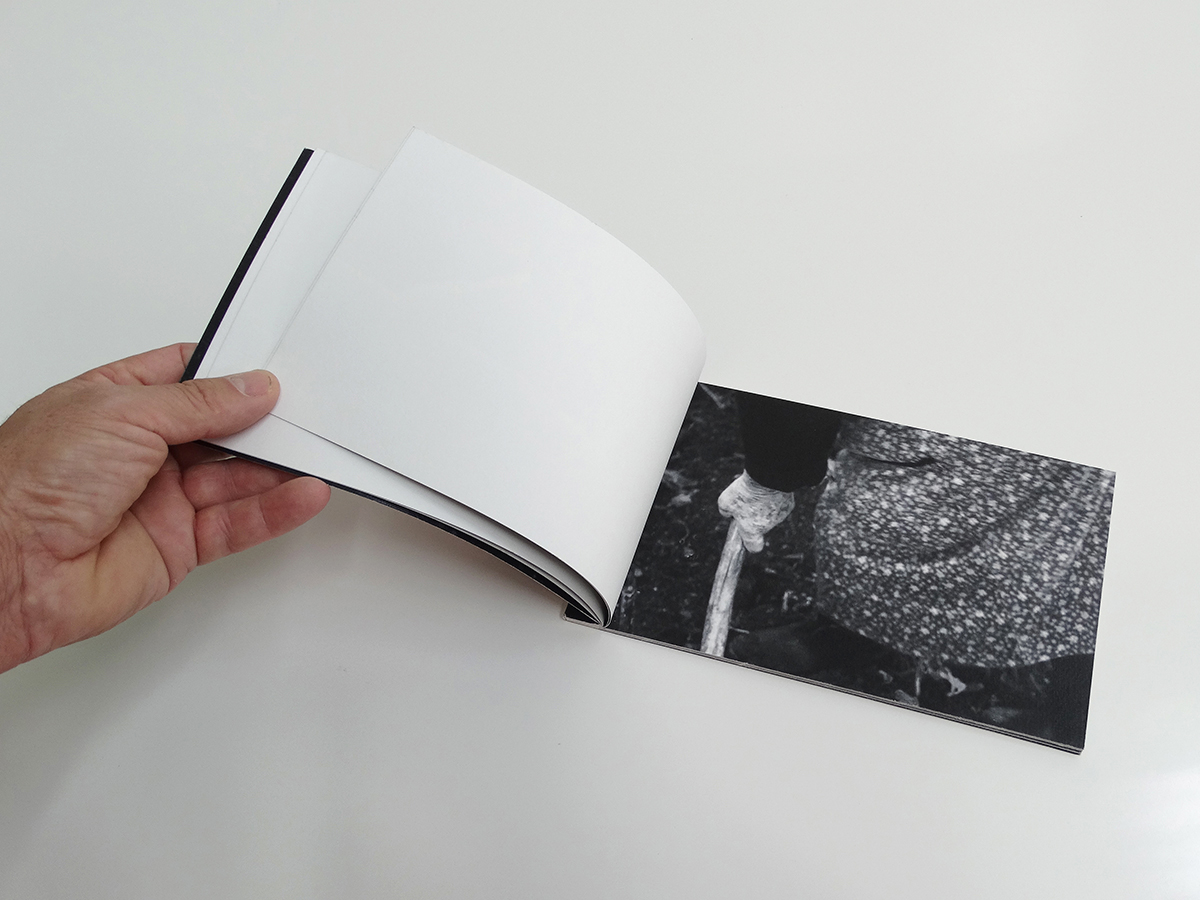 Thierry Ferreira - Photography 2015 - Sementeira